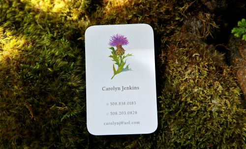 Thistle - Personal Calling Card by Felix Doolittle
