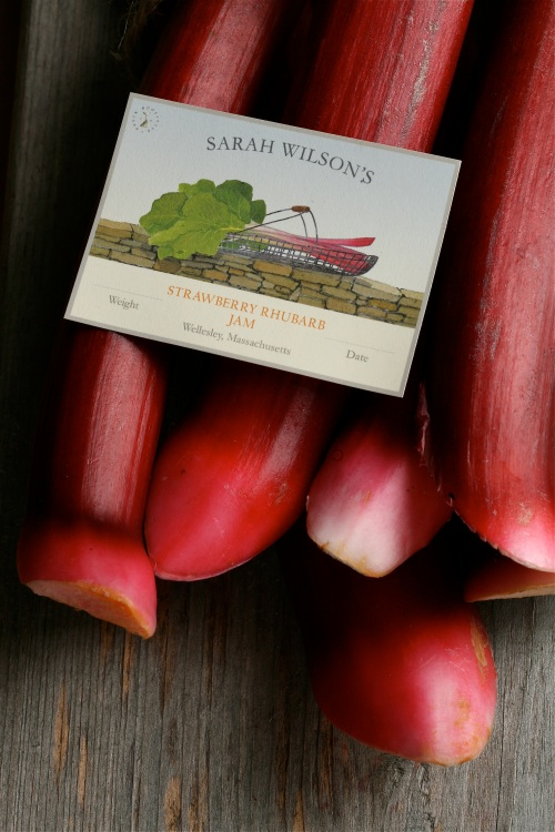 Rhubarb stalks and label